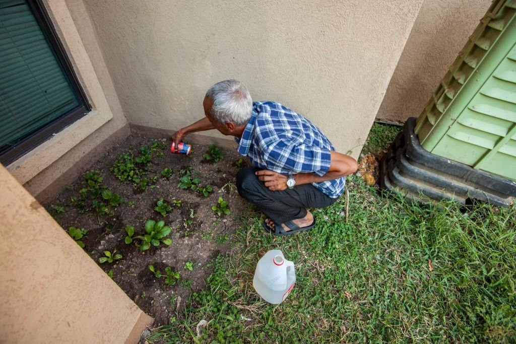 Vickery Meadow resident tends backyard garden