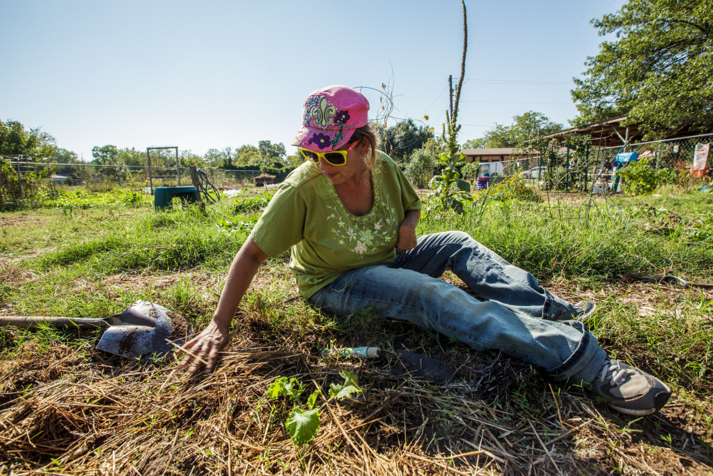 Urban gardeners in Dallas tend growing vegetables