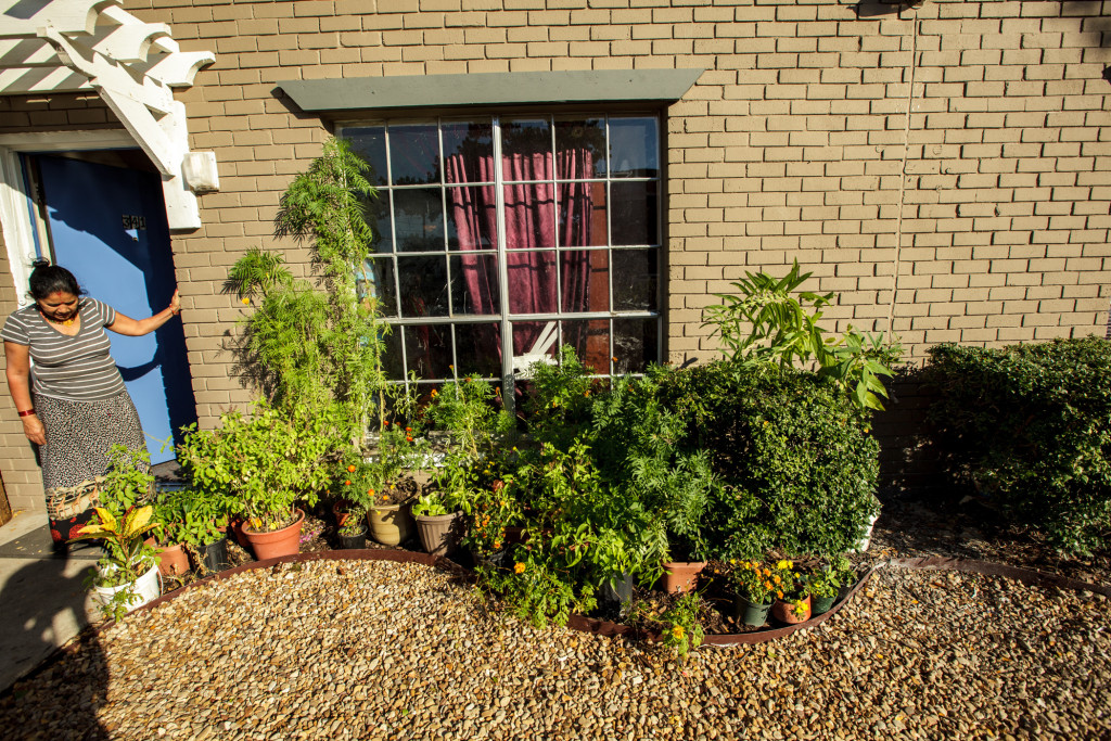 An apartment garden grows in Vickery Meadow area of Dallas