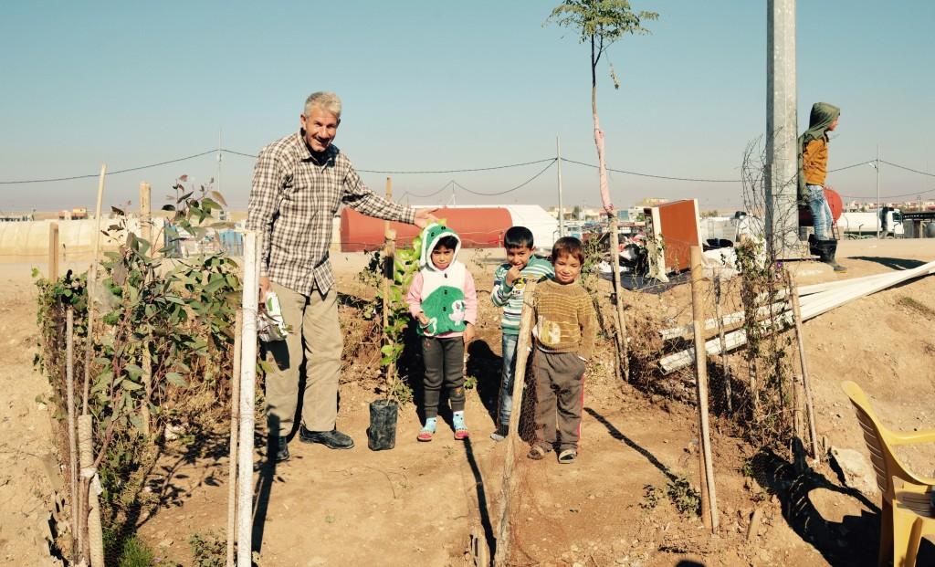 Roadside garden at Domiz camp, Iraq, takes shape