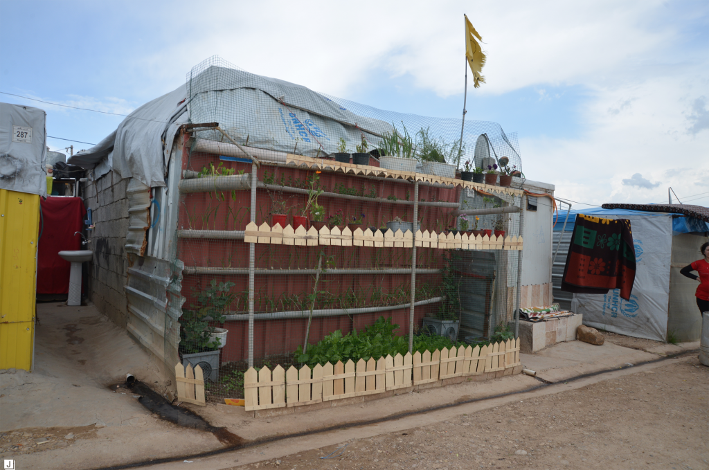 A tiered garden system stands out in Domiz camp, Iraq