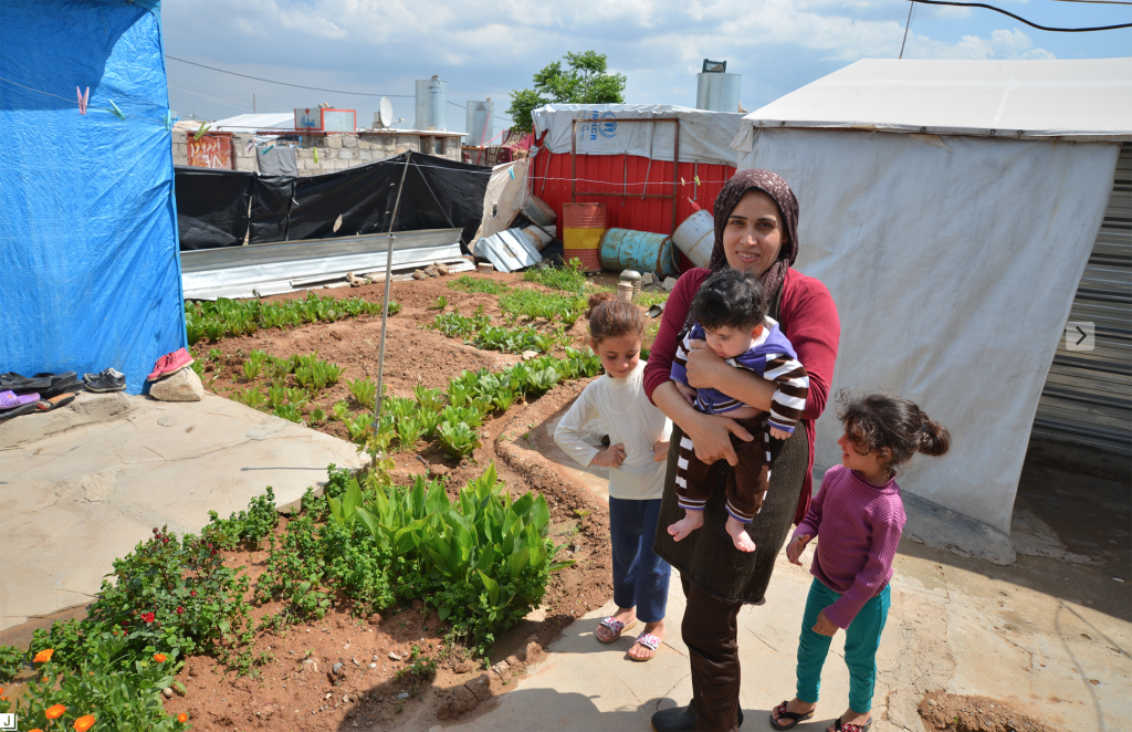 Refugee family in Domiz camp, Iraq finds comfort in the garden